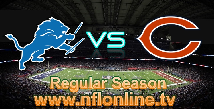 lions-vs-bears-live-streaming