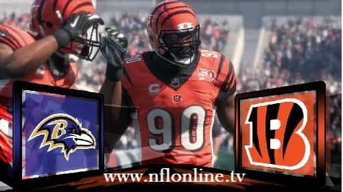 Cincinnati vs Baltimore NFL Live