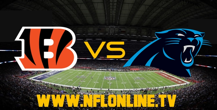 Live Stream Bengals VS Panthers