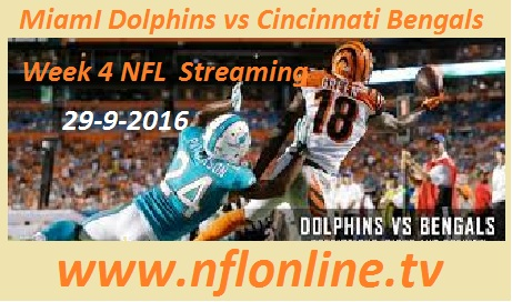 Miami vs Cincinnati live